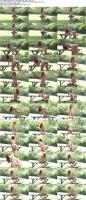 209439018_agathavegacollection_watch4beauty_bikini_time_s.jpg